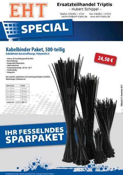 Kabelbänder Paket schwarz 500-teilig